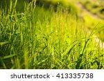 grass garden   Shutterstock . vector #413335738