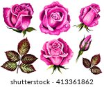 Watercolor Set Roses Flowers ...