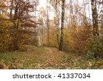 last days of late autumn | Shutterstock . vector #41337034