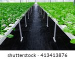 greenhouse greenhouse... | Shutterstock . vector #413413876