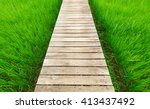 Wood Bridge Walkway Along Gree...
