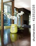 Close Up Decor Orchid Plant And ...