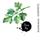 watercolor hand drawn parsley.... | Shutterstock . vector #413549572