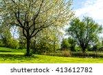 Park Landscape In Spring