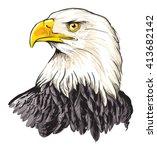 Stock vector bald eagle haliaeetus leucocephalus 413682142