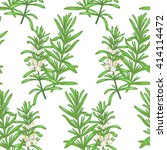 illustration of rosemary.... | Shutterstock .eps vector #414114472