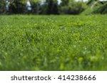 green grass background   Shutterstock . vector #414238666