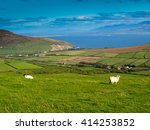 Small photo of View from the Dingle Peninsula to the Iveragh peninsula with green grass, a blue ridge and a blue sky with grazing sheeps.