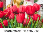 plastic floral bouquet of... | Shutterstock . vector #414287242