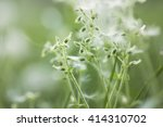 soft nature scene | Shutterstock . vector #414310702