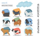 dog breeds. miniature toy dog... | Shutterstock .eps vector #414355516