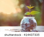 sprout growing on glass piggy... | Shutterstock . vector #414437335