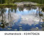 Reflective Blue Pond With Lily...