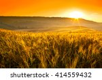 tuscany wheat field hill at... | Shutterstock . vector #414559432