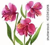 floral ornament  alstroemeria...   Shutterstock . vector #415341646