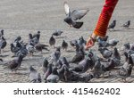Pigeons In A Public Place