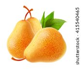 three juicy ripe pears with...   Shutterstock . vector #415540465