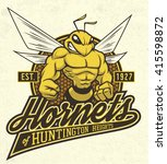 "retro ""hornets"" athletic design ... 