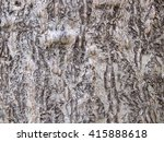 tree bark texture | Shutterstock . vector #415888618