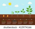 seedlings growing infographics... | Shutterstock .eps vector #415974166