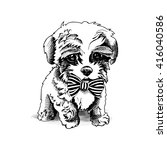 terrier pup with a tie. vector... | Shutterstock .eps vector #416040586