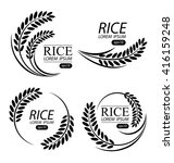 rice. vector illustration. | Shutterstock .eps vector #416159248