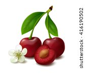 two whole cherry berries with... | Shutterstock .eps vector #416190502