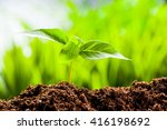 new life. young sprout in... | Shutterstock . vector #416198692