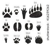 vector set of forest animals... | Shutterstock .eps vector #416259262