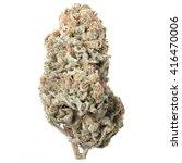 predator pink marijuana bud | Shutterstock . vector #416470006