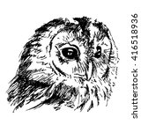 hand sketch owl head. vector... | Shutterstock .eps vector #416518936
