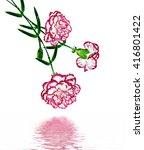 bouquet of flowers carnation.... | Shutterstock . vector #416801422