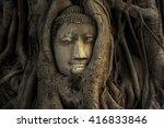 Buddha Head Statue Hidden In...