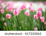 amazing nature of pink tulips... | Shutterstock . vector #417233062