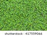 Fresh Green Leaves.green...