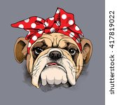 Bulldog Portrait In A Headband...