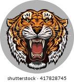 tiger face | Shutterstock .eps vector #417828745
