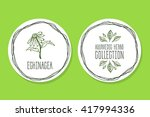 ayurvedic herb collection.... | Shutterstock .eps vector #417994336