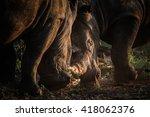 herd of rhino fighting in dust... | Shutterstock . vector #418062376
