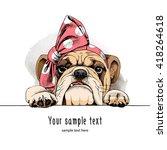 bulldog portrait in a headband. ... | Shutterstock .eps vector #418264618