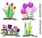 garden flowers growing in the... | Shutterstock .eps vector #418334596
