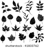 different grunge leafs vector | Shutterstock .eps vector #41833762
