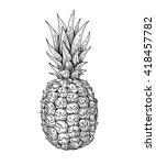 Vector Hand Drawn Pineapple....