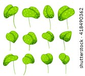 a set of botanical leaves to...
