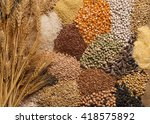 Cereal Grains   Seeds  Beans