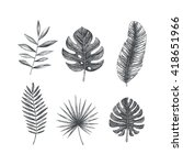 tropical leaves collection.... | Shutterstock .eps vector #418651966