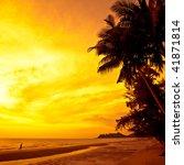Coconut Palms And Sand Beach ...