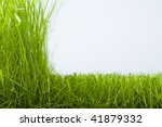 Natural Grass And The Cut Off...