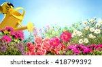 Watering Flowers In Garden...