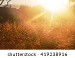 the sunbeams of the sunrise... | Shutterstock . vector #419238916